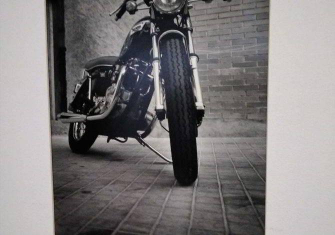 Fotos y Motos estará en la Ínsula hasta finales de agosto